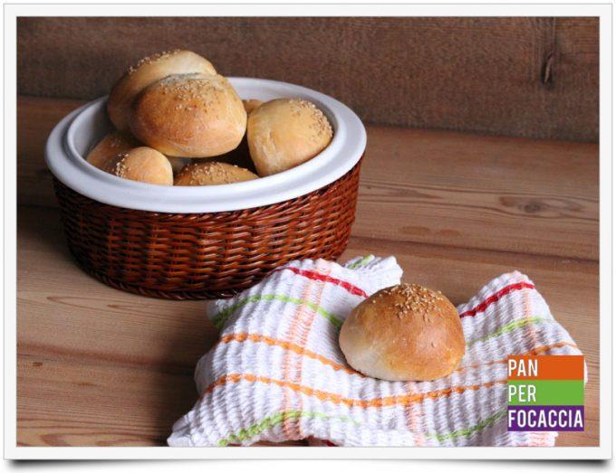 Panini per hamburger 1